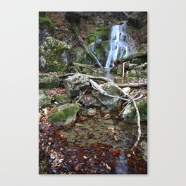 Waterfall Fischbach Germany 2014 Canvas Print