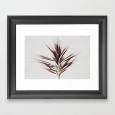 grass2 Framed Art Print