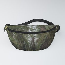 Redwood Forest Adventure III - Nature Photography Fanny Pack