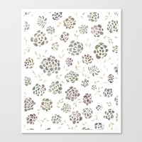 succulents Canvas Prints featuring Succulents by Kelli Murray