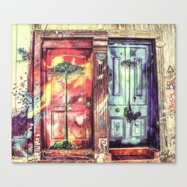 Colored Double Doors Canvas Print