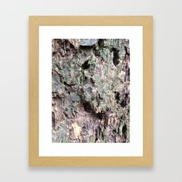 Abstracts in Nature Series -- Redwood Bark Framed Art Print