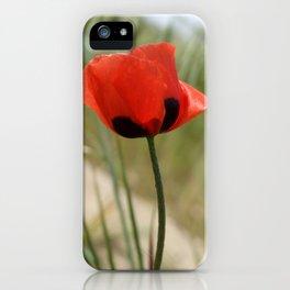 Wild Poppy iPhone Case