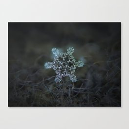Real snowflake macro photo - Slight Asymmetry Canvas Print