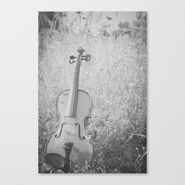 Summer Fiddle Canvas Print