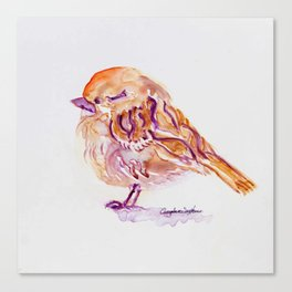Little Purple Brown Sparrow watercolor by CheyAnne Sexton Canvas Print