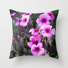 Beauty on The Rock Throw Pillow