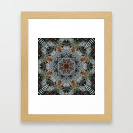 Spruce Cones And Needles Kaleidoscope K4 Framed Art Print