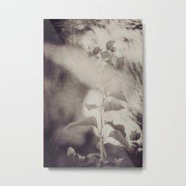 Simplicity of Growth Pt.2 Metal Print