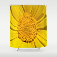 sunshine Shower Curtains featuring Sunshine by Louisa Catharine Photography And Art