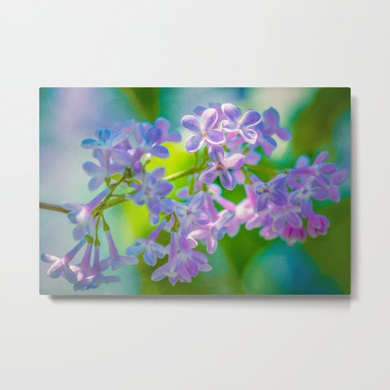 Purple Lilac Flowers Metal Print
