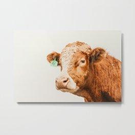 Take No Bull. Metal Print