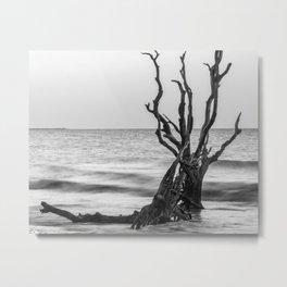 Botany Bay, South Carolina Metal Print