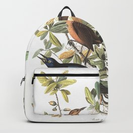 Boat tailed grackle, Birds of America, Audubon Plate 187 Backpack