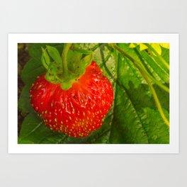 Garden strawberries tasty berry Art Print