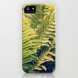 Botanical Garden Ferns iPhone Case