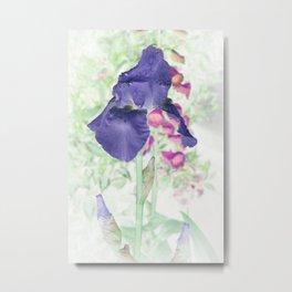 Summer Iris Metal Print