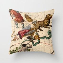 Constellation Chart 1693d Throw Pillow
