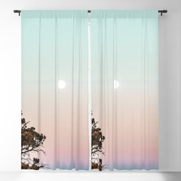 Rainbow Color Sunset // Incredible Clear Sky Photograph Through the Forest Trees Blackout Curtain