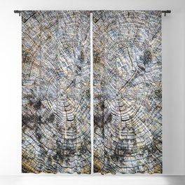 Old Tree Rings Blackout Curtain