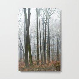German forest – fog Metal Print