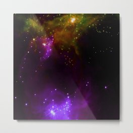 The Cosmos (purple and yellow) Metal Print