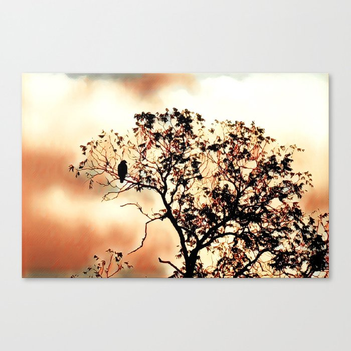 Day Dreamer Canvas Print