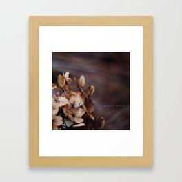 ...brown... Framed Art Print