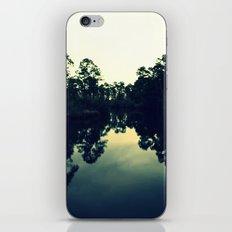 Reflection Swamp iPhone & iPod Skin