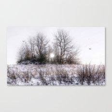 Winteridylle Canvas Print
