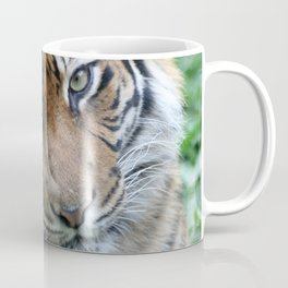 Tiger 002 Coffee Mug