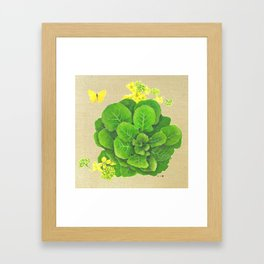 Collard Greens on Linen Framed Art Print
