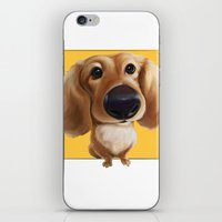 dachshund iPhone & iPod Skins featuring dachshund by joearc