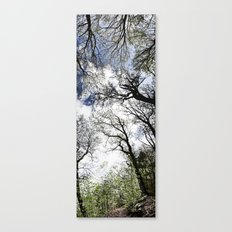 Vertical Trees Canvas Print