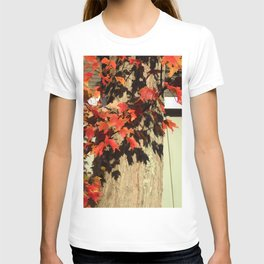 Bright Leaves, Deep Shadows T-shirt