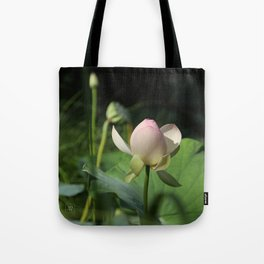 In Delicate Pinks Tote Bag