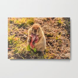 Good food makes good mood Metal Print