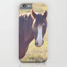Chesnut Horse iPhone 6 Slim Case