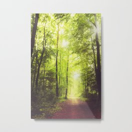 Collecting Light Metal Print