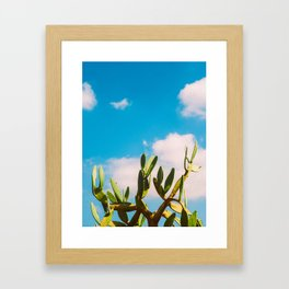 Beautiful Vintage Photo Green Cactus With Blue Sky White Cloud Framed Art Print