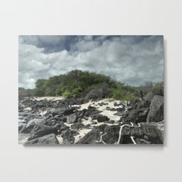 sand and rocks of the Galapagos Metal Print