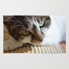 Beautiful Cat Portrait Rug