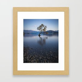 lone tree of lake Wanaka Framed Art Print
