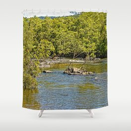Beautiful river in the tropics Shower Curtain