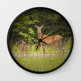 Doe and Fawn along a roadside near Iron Mountain Michigan Wall Clock