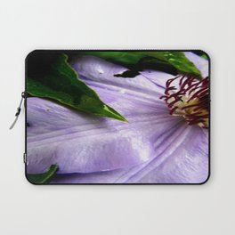 Raindrops on Roses Laptop Sleeve