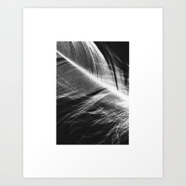 Feather Negtaive #1 Art Print