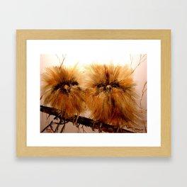 Young Owls Framed Art Print