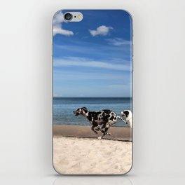 Playing dogs at the beach iPhone Skin