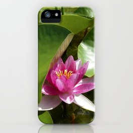 pink water lily XI iPhone Case